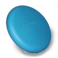 Eco Disc - Blue